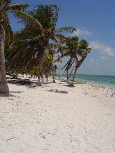 Rio Indio beach north