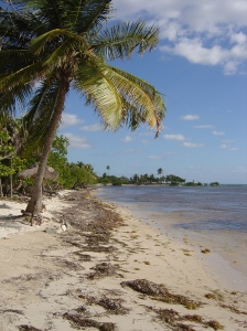 S Majahual beach 1
