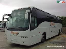 mayab bus white